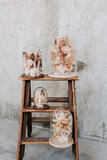 Glazen stolp 25cm, droogbloemen div. kleuropties_