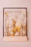 Glazen lijst M, droogbloemen div. kleuropties_