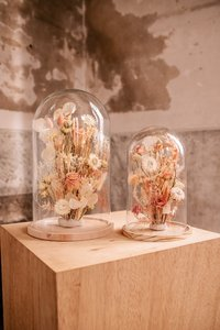 Glazen stolp 28cm, droogbloemen div. kleuropties