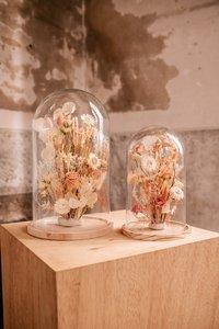Glazen stolp 25cm, droogbloemen div. kleuropties
